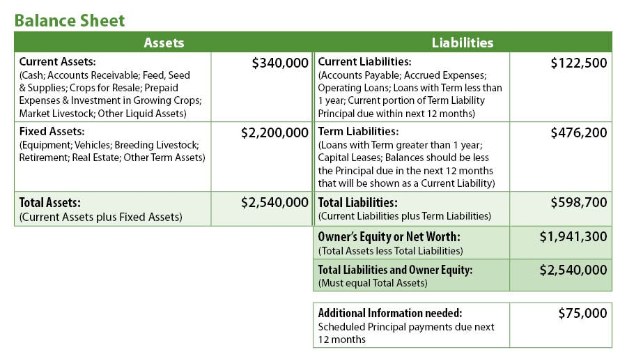 farm financial analysis of farm financial statement balance sheet with farm financial statement samples