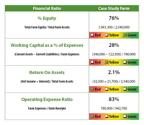 farm financial analysis of farm financial statements with farm financial statement samples