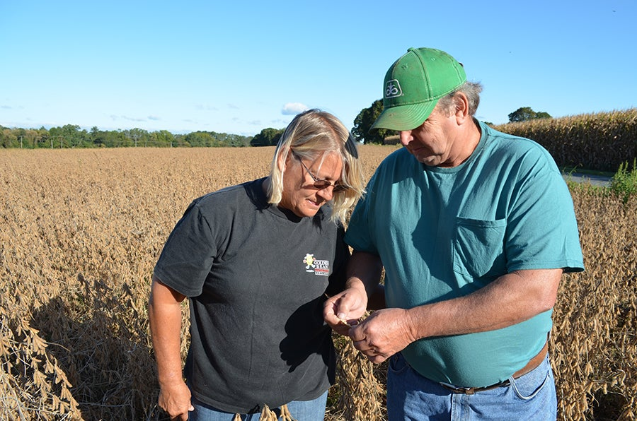 Glen and Linda Krall examining their soybean crop.