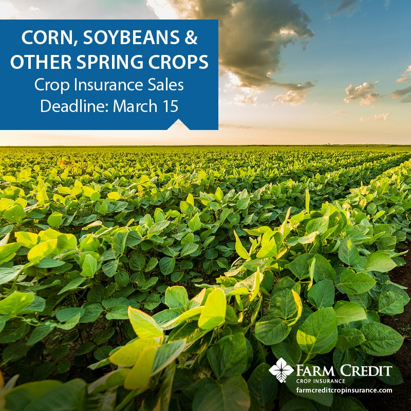 MidAtlantic Farm Credit Announces 2019 Spring Sales Closing Date for Crop Insurance