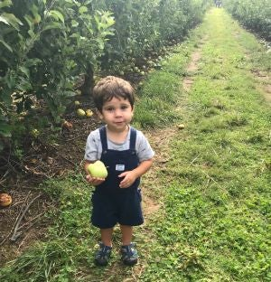 apple picking at larriland farm