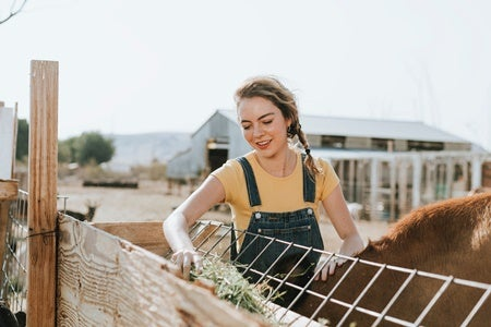 how to write a farm business plan