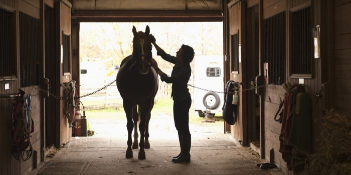 Horse farm Operating Loan